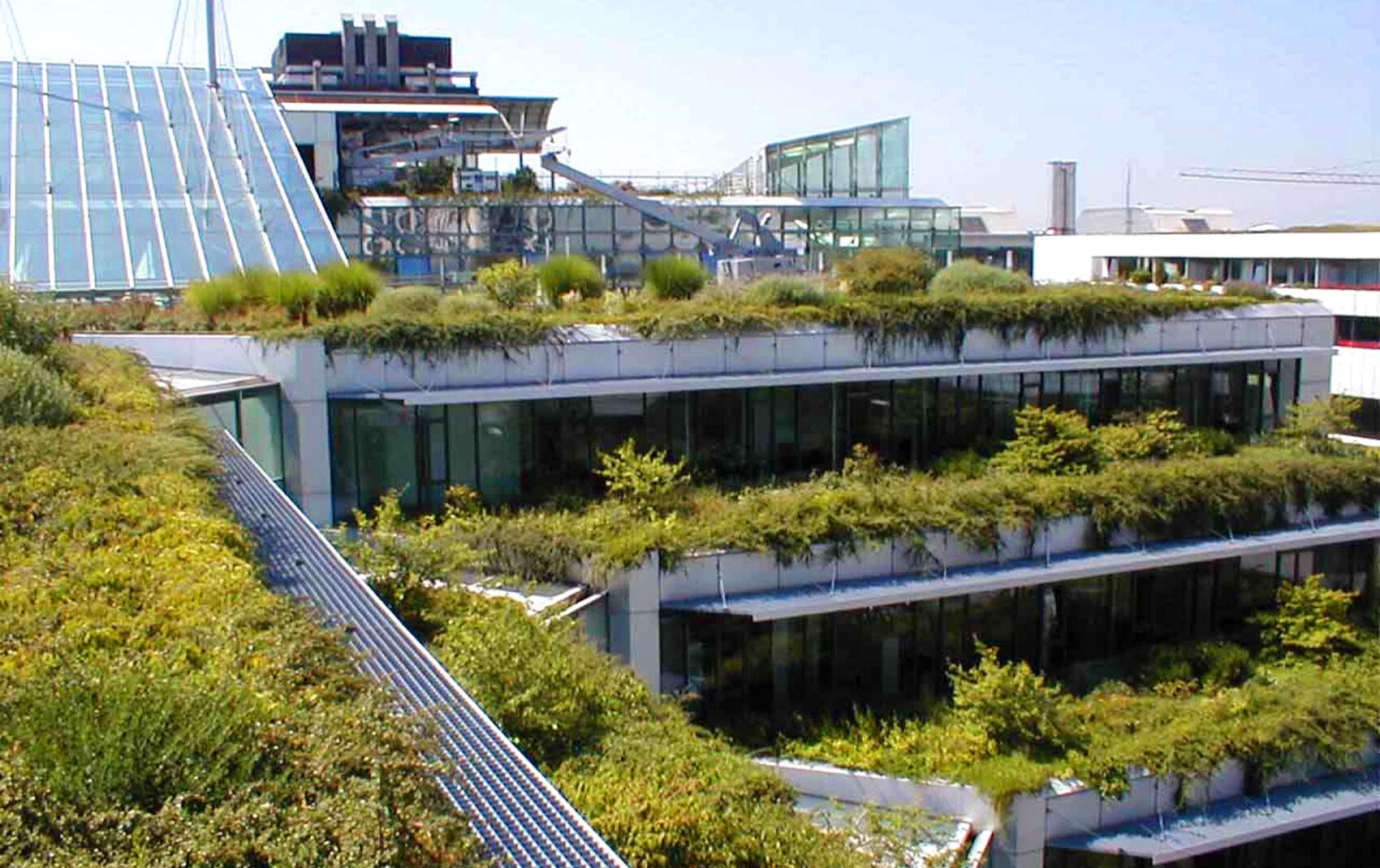 HypoHausOst-Terrassen-Überblick-ba